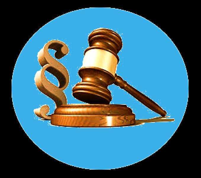 Logo Dr Wehbi